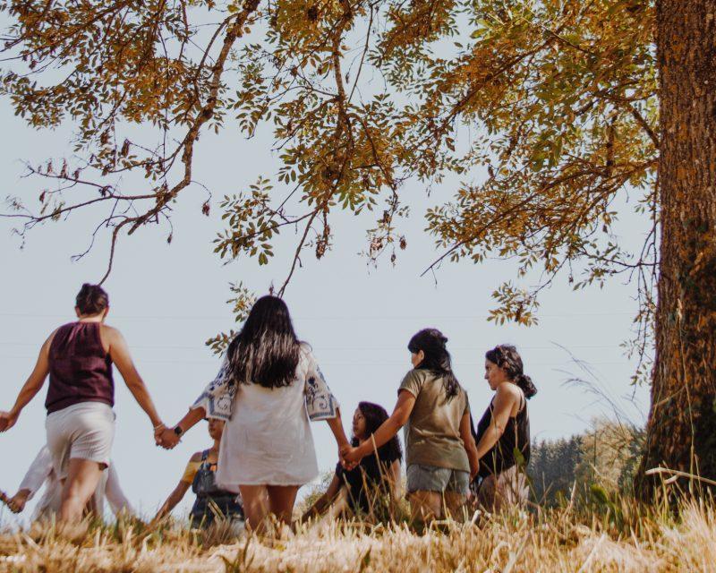 1 Tribu